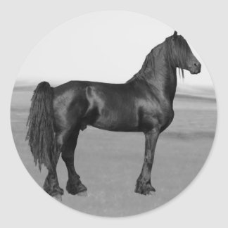 Cavalo orgulhoso do garanhão do preto do frisão adesivo