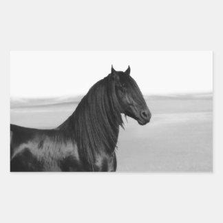 Cavalo orgulhoso do garanhão do preto do frisão adesivos retangular