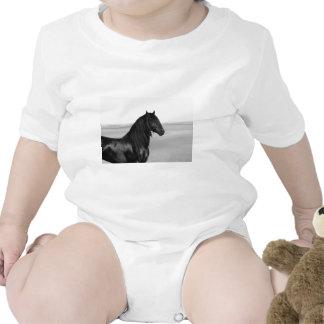 Cavalo orgulhoso do garanhão do preto do frisão camisetas