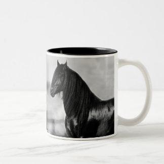 Cavalo orgulhoso do garanhão do preto do frisão canecas