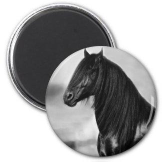 Cavalo orgulhoso do garanhão do preto do frisão ímã redondo 5.08cm