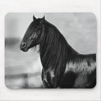 Cavalo orgulhoso do garanhão do preto do frisão mouse pad