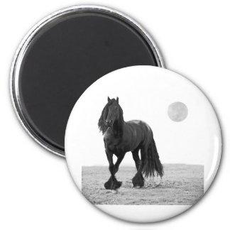 Cavalo perfeito imas de geladeira