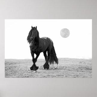 Cavalo perfeito poster
