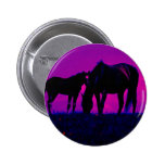 Cavalo & potro boton