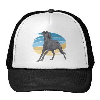 Cavalo preto boné