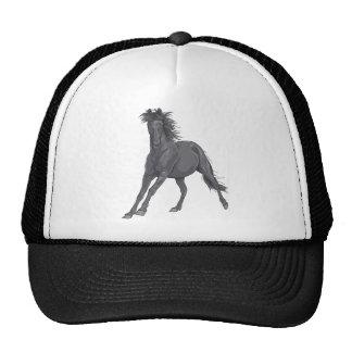 Cavalo preto bone