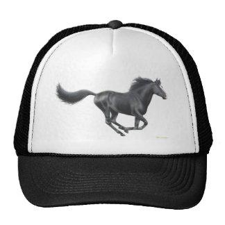 Cavalo preto de galope boné