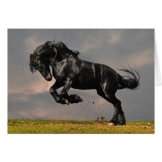 Cavalo preto do frisão que funciona livre cartão comemorativo