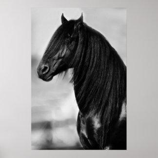 Cavalo preto do garanhão do frisão posteres