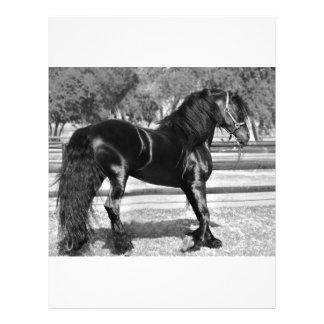 Cavalo preto do garanhão papel de carta