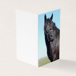 Cavalo preto e o céu azul