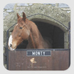 Cavalo que está de vista fora de seu estábulo adesivo em forma quadrada