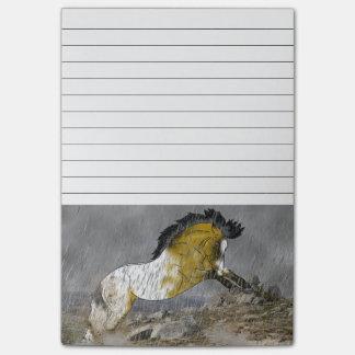 Cavalo selvagem do Appaloosa do Buckskin Bloquinho De Nota