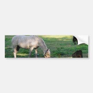 Cavalos Adesivo Para Carro