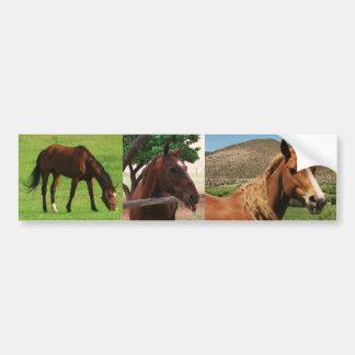 Cavalos Adesivo