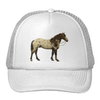 Cavalos antigos - Appaloosa Boné