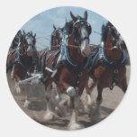 Cavalos de Clydesdale Adesivos Redondos