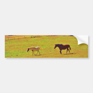 Cavalos em um campo colorido do arco-íris adesivo para carro
