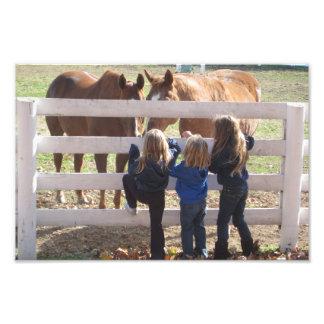 Cavalos & impressão da foto das meninas