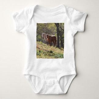 Cavalos na fazenda body para bebê