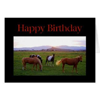 Cavalos no feliz aniversario do por do sol cartão