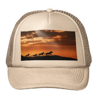 Cavalos no por do sol boné