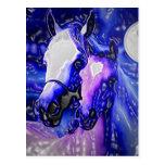 Cavalos & noite cartao postal