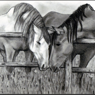 Produtos Para Casa Cavalos Nuzzling Zazzle Com Br