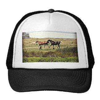 Cavalos Running Boné