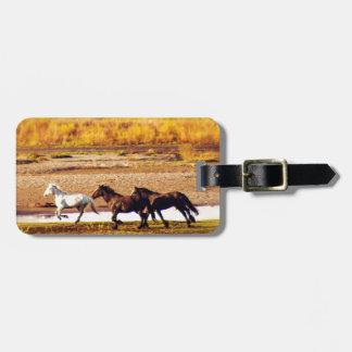 Cavalos Running Etiqueta De Bagagem