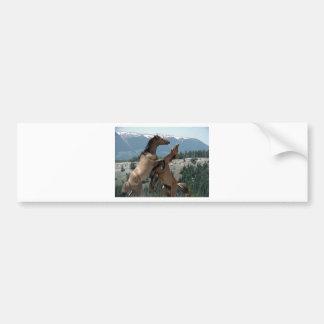Cavalos selvagens adesivo