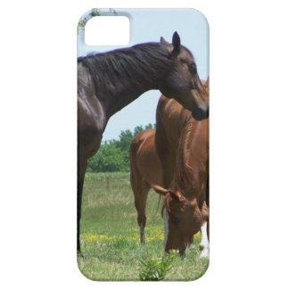 Cavalos selvagens capa para iPhone 5