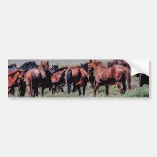 Cavalos selvagens para fora para o oeste adesivo