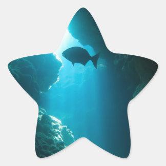 Caverna e peixes azuis claros adesito estrela