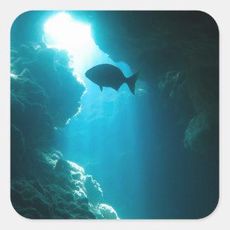 Caverna e peixes azuis claros adesivo quadrado