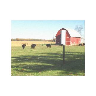 Celeiro e pasto vermelhos grandes do gado impressão em tela
