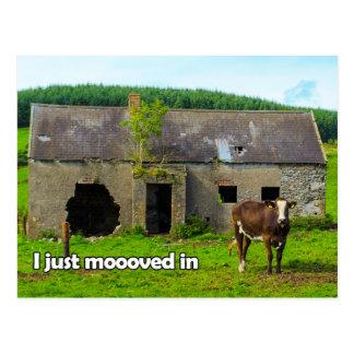 Céltico Ireland que eu apenas moooved no cartão da