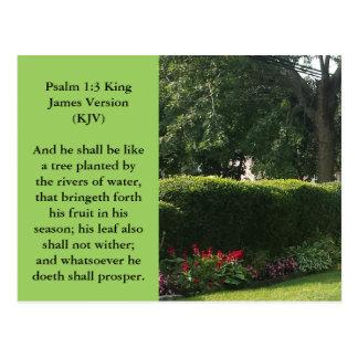 Cena religiosa do cartão-Jardim com árvore enorme Cartão Postal