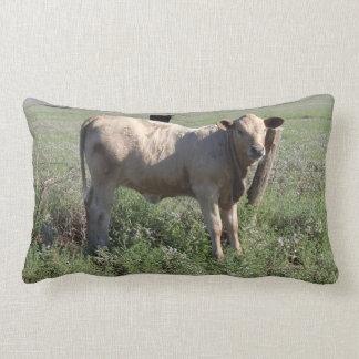 Cena rural das vacas ocidentais engraçadas do gado travesseiros de decoração