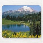 Cénico alpino, Washington Mouse Pad