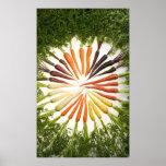 Cenouras de muitas cores em canvas poster