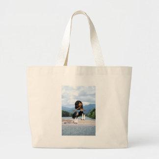 Centauro de salto bolsas