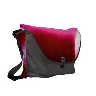 Centauro impressionante bolsas mensageiro