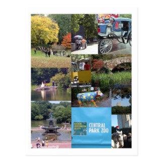 Central Park - cartão de NYC
