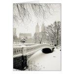 Central Park - feriado de New York Cartão