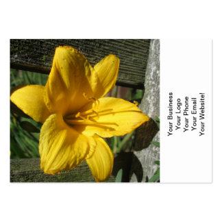 Cerca resistida amarelo do lírio cartão de visita grande