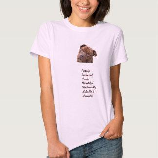 """Cercas do """"Benz"""" de Pitbull para o t-shirt da"""