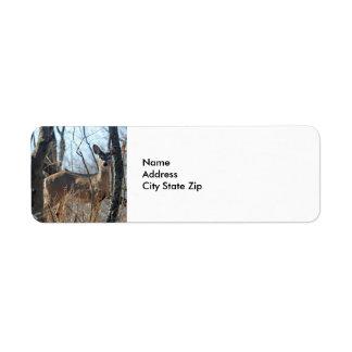 Cervos 784 etiqueta endereço de retorno