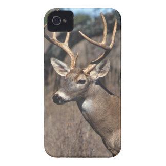 Cervos Branco-Atados - cobrir corajoso de Capas Para iPhone 4 Case-Mate
